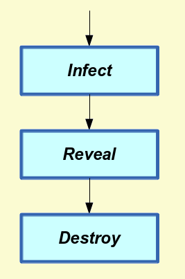 Virus Stages
